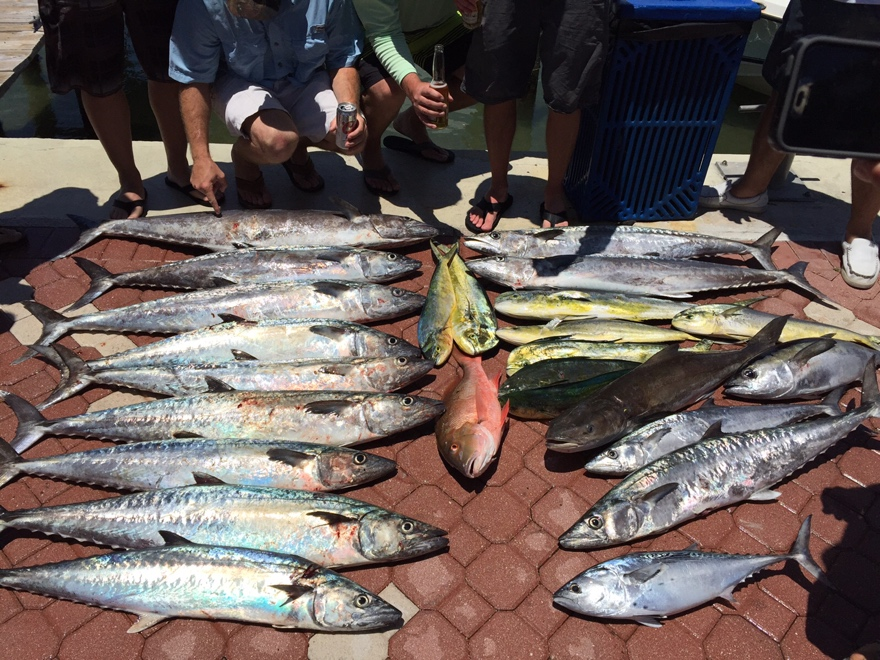 Fishing Charter West Palm Beach