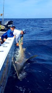 shark fishing charters palm beach florida